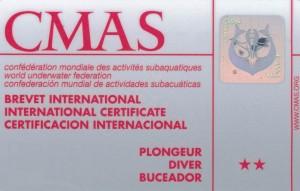 CMAS-Silber